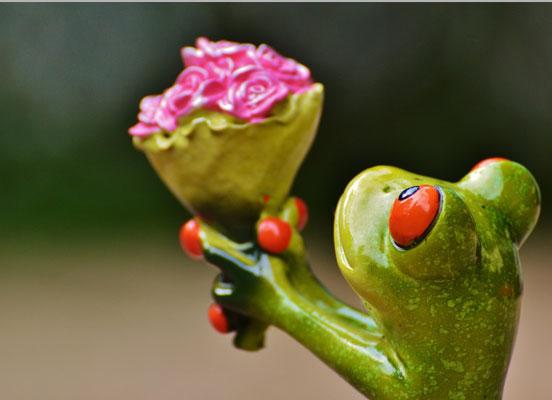 Weiße hispanische Dating-Website